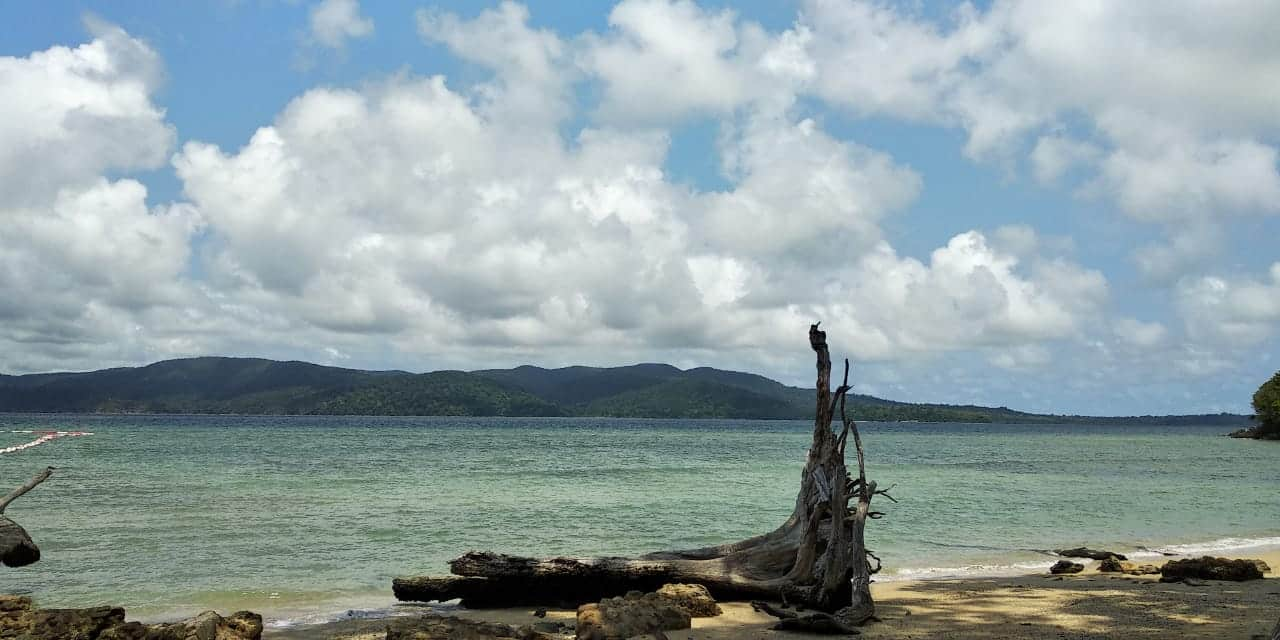 Enchanting Andaman – In Search of Vitamin Sea