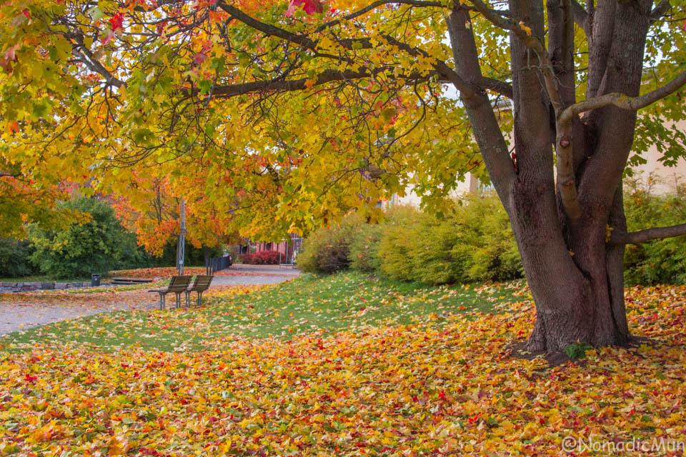 Autumn in Helsinki vanhakaupunki
