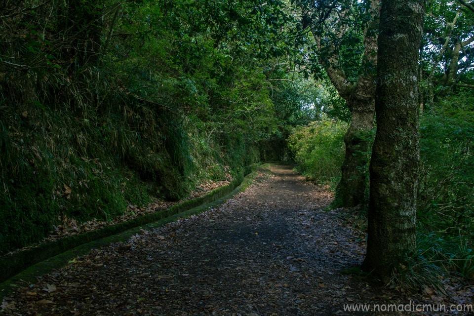 Levada Caldeirao Verde_Madeira