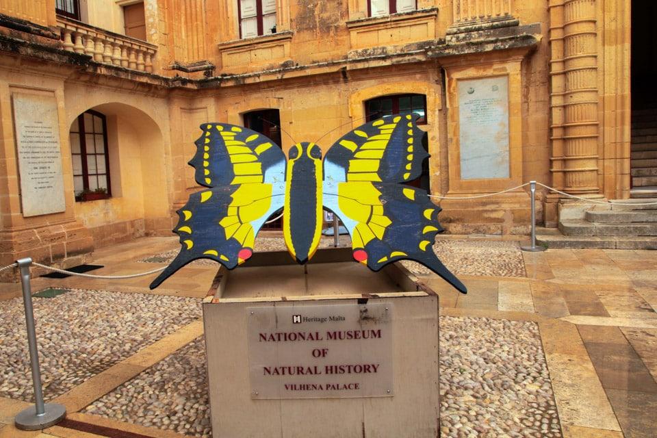 museum of natural history , Mdina