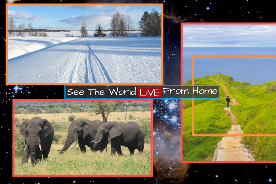 What is happening right now:  See the World Live from Home