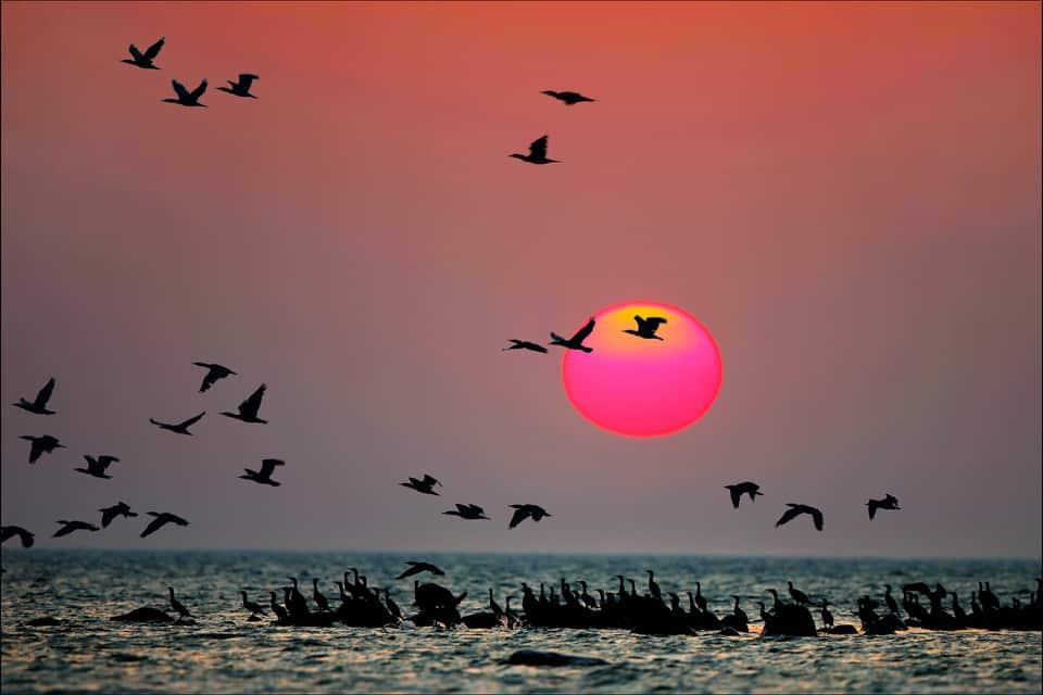 sunset at Ruhnu